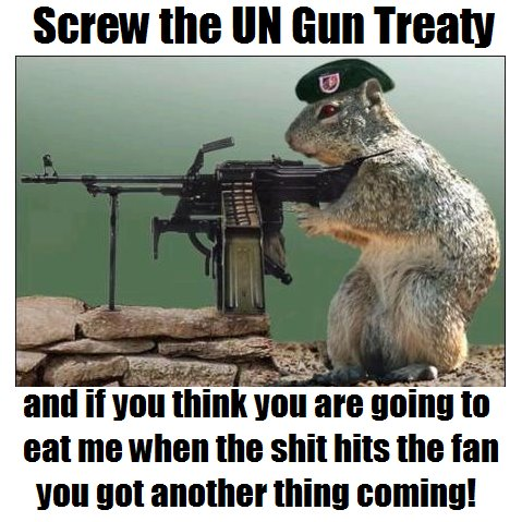 Screw the UN GUn Treaty