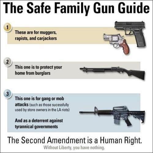 safe family gun guide