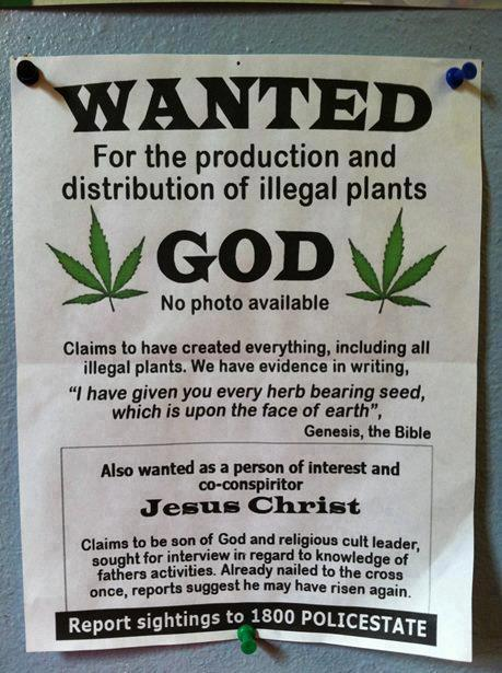 wanted for the production and distribution of illegal plants