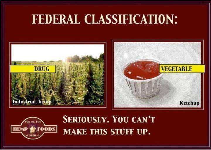 Federal Classification