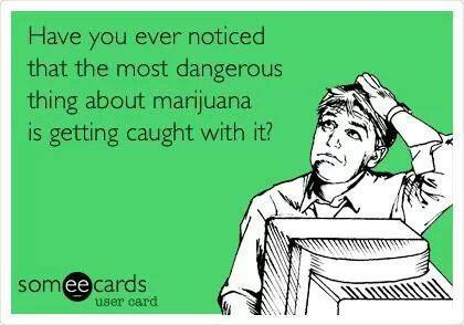 Have you ever noticed that the most dangerous thing about marijuana is getting caught with it?