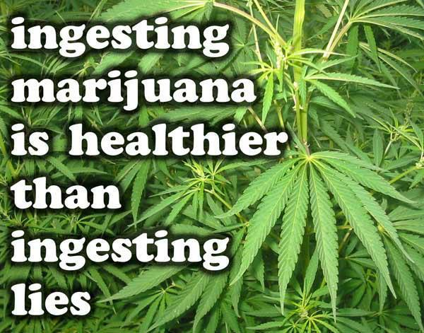 ingesting marijuana is healthier than ingesting lies