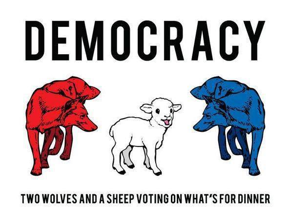 democracy two wolves and a sheep voting on what's for dinner