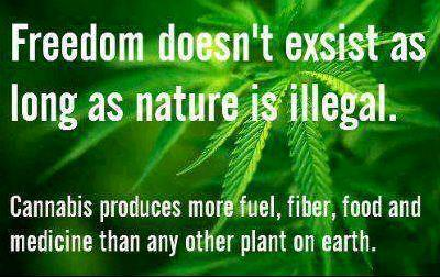 Freedom doesn't exist as long as nature is illegal