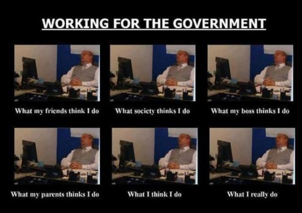 Working for the government
